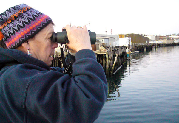 ALLEGRA BOVERMAN/Staff photo. Gloucester Daily Times. Gloucester: Donna and her husband Dick Marchant of Gloucester on Thursday afternoon saw possibly two whales in Smith's Cove and inner Harbor in the area between Cruiseport to Harbor Loop.