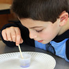"First-grader Matt Russo examines ""magic sand"" during an interactive science program sponsored by Top Secret Science on Monday morning at Manchester Memorial Elementary School. Jesse Poole/Gloucester Daily Times Jan. 30, 2011"