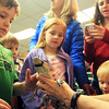 Sam Pallazolla, 5, of Gloucester, cautiously proceeds to pet Wally the alligator at the Sawyer Free Library during a live animal event sponsored by Critter 'N Creatures on Saturday morning. Jesse Poole/Gloucester Daily Times Jan. 28, 2012