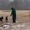 Allegra Boverman/Gloucester Daily Times. Because of the wind picking up at Good Harbor Beach on Friday morning as the snowstorm began, the Moir family went with their dogs to Seine Field, along Farrington Avenue, to play. From left are Barry, Susan and Scott with dogs Sage and Scout. This field, protected by trees, was relatively windless for the time being.