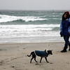 Allegra Boverman/Gloucester Daily Times. Michelle Fowler of Gloucester walks along Long Beach, her favorite beach, with her dog Penny on Friday morning at high  tide and as the snowstorm was beginning.