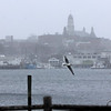 Allegra Boverman/Gloucester Daily Times. Downtown Gloucester as snow starts falling on Friday.