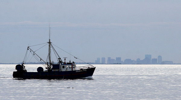 Gloucester: The Padre Pio returns to Gloucester Harbor as the Boston skyline can be seen in the distance. Photo by Kate Glass/Gloucester Daily Times