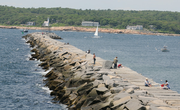 PAUL BILODEAU/Staff photo. The breakwater in Gloucester was a flurry of activity on a beautiful early Summer day on Tuesday.