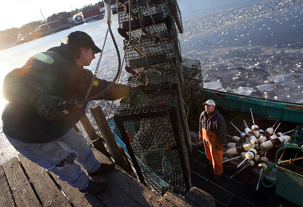 Manchester: Chris Crane, left, helps Scott Stevens unload lobster traps from his boat, the Matthew David, in Manchester Harbor on Tuesday afternoon. Stevens is pulling up all of his traps until April or May. Photo by Kate Glass/Gloucester Daily Times Tuesday, January 6, 2009