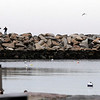 Rockport: Two people venture out on the pier at Bearskin Neck yesterday afternoon. Warmer temperatures have melted most of the snow in the area. Photo by Kate Glass/Gloucester Daily Times Monday, January 5, 2008