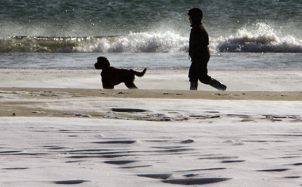 Manchester: A person braves the cold to walk their dog on Singing Beach Thursday morning. Mary Muckenhoupt/Gloucester Daily Times
