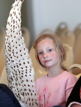 Gloucester: Anya Aase, 7, of Rockport listens to Norman Smith of the Trailside Museum speak about owls while holding a wing from a snowy owl at the Elks Club Saturday afternoon. Smith could not bring his snowy owl this visit but brought a barn owl to show everyone instead. Mary Muckenhoupt/Gloucester Daily Times