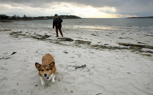 Gloucester: Christy Park walks her dog, Peaches, along Niles Beach yesterday afternoon as the sun peeks out from the clouds. Park says she likes walking there because she can find good driftwood. Photo by Kate Glass/Gloucester Daily Times