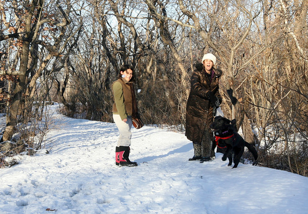 Rockport: Cathy D'Annolto throws a snowball for her dog, Sophie, as she and her daughter, Daniella D'Annolto, walk through Halibut State Park on Thursday. Photo by Kate Glass/Gloucester Daily Times