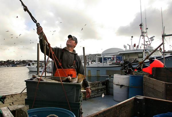 Gloucester: Dan Dunbar unloads cod off Little Mako at the Gloucester Seafood Display Auction Friday afternoon.  The Commerce Secretary has refused to raise catch limits and declair an economic emergency for the fishing industry and communities. Mary Muckenhoupt/Gloucester Daily Times