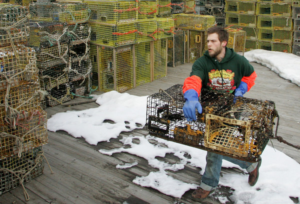 Gloucester: James Brown stacks lobster traps at Harbor Cove by St. Peter's Square Thursday afternoon. Mary Muckenhoupt/Gloucester Daily Times
