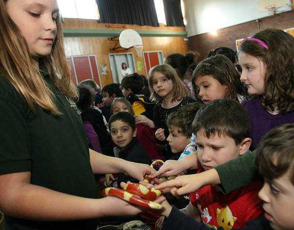 ALLEGRA BOVERMAN/Staff photo. Gloucester Daily Times. Gloucester: The Cape Ann  Vernal Pond Team paid a visit to Beeman Elementary School on Friday afternoon and brought many snakes with them to demonstrate and talk about with the students and staff. Kate Bevins, a fourth grader who volunteers with the team, left, shows students an albino milk snake. Finley Sweeney, a kindergartner, second from right, bottom, wasn't so sure what he thought of the snake.