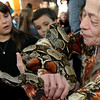 ALLEGRA BOVERMAN/Staff photo. Gloucester Daily Times. Gloucester: The Cape Ann  Vernal Pond Team paid a visit to Beeman Elementary School on Friday afternoon and brought many snakes with them to demonstrate and talk about with the students and staff. Holding Maxine, a boa, is Annette Huskins, part of the team. From left are second graders Miranda Todd and Zachary Oliver.