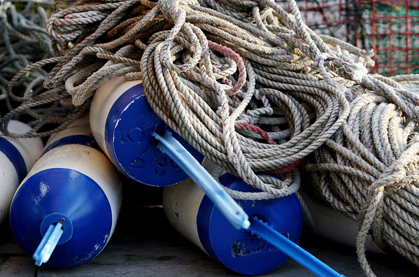 ALLEGRA BOVERMAN/Staff photo. Gloucester Daily Times. Rockport: Buoys and ropes at rest for the time being near Motif No. 1 in Rockport on Friday.