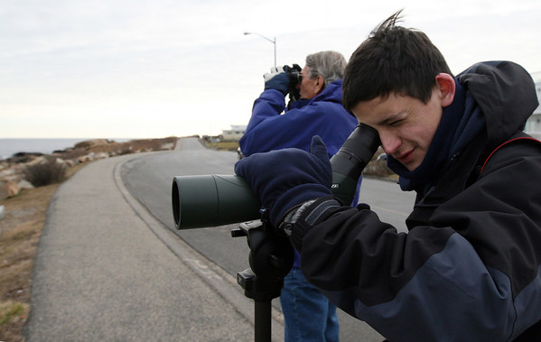 ALLEGRA BOVERMAN/Staff photo. Gloucester Daily Times. Gloucester: Avid birders James Orrico, left, and his grandson Alex Burdo, right, both of Fairfield, Conn., were looking for unusual birds in Cape Ann and other areas nearby on Wednesday. While in Gloucester along Atlantic Road, they saw a male king eider, which, according to them, is rarely seen except very occasionally in the Gloucester area. They also saw a Townsend's warbler in Ipswich and other birds such as white-winged scoters, red-necked grebes and common goldeneyes. They participate in bird counts via ebird.com, part of the Cornell Lab of Ornithology. They travel together all over the country looking for birds.