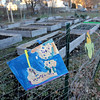 Allegra Boverman/Gloucester Daily Times. About $345,000 has been set aside to redevelop and revitalize Burnham Field. This is the community garden.