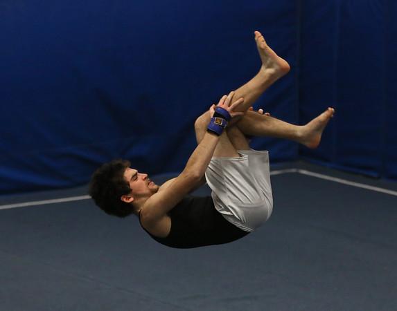 TigerFish Gymnastics