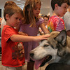 Michael Murphy, 5, and sister Colleen Murphy, 8, both of Rockport pet Sorrel, an Alaskan Husky sled dog after a presentation about an educational and therapy program, Mountain Mushers at the Rockport Public Library yesterday. Photo by Maria Uminski/ Gloucester Daily Times