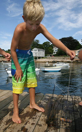 Gloucester: Cole Ventimiglia checks out a lobster he caught using a hot dog as bait off the Magnolia Pier. The trap was only in the water for about 10 minutes. Photo by Kate Glass/Gloucester Daily Times