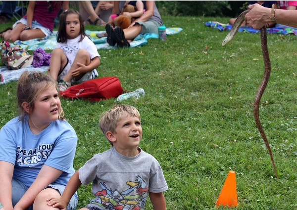 """Christopher Dailey, 4 of Magnolia and his sister Rachel, 8, stare in awe at the leg-less lizard at the """"One World, Many Tails"""" event put on by Rockport Library with the help of Critters 'N Creatures. Photo by Maria Uminski/Gloucester Daily Times"""