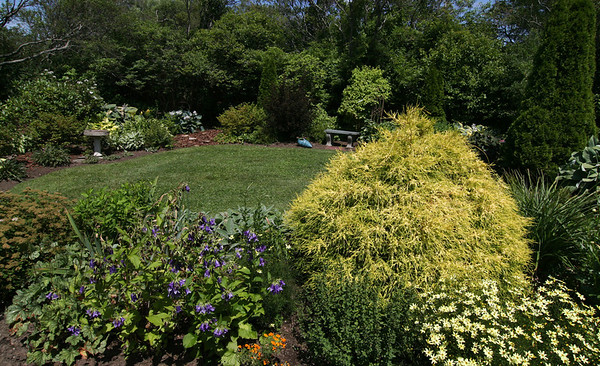 ALLEGRA BOVERMAN/Staff photo. Gloucester Daily Times.Rockport: In the gardens of Nan Blue of 14 Eden Road on Thursday. Her gardens are on the Coastal Gardens tour on Friday and Satuday in Rockport.