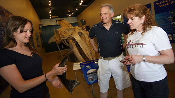 ALLEGRA BOVERMAN/Staff photo. Gloucester Daily Times. Gloucester: Laura Howes talks about baleen with Anthony and Karen Abbene of Melrose, visiting for the day on Thursday. The Whale Center of New England reopened in mid-June.