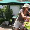 ALLEGRA BOVERMAN/Staff photo. Gloucester Daily Times.Rockport:Carol Delaney of 6 Norwood Avenue in Rockport waters and tends to her garden on Thursday. Her gardens are on the Coastal Gardens tour on Friday and Satuday in Rockport.