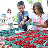 From left to right, Theo Miller, Annalise Miller and Nidhi Pillai, all age 9 from Hamilton, pick out cartons of blueberries and rasberries at the Cape Ann Farmer's Market on Thursday. Photo by Maria Uminski/Gloucester Daily Times