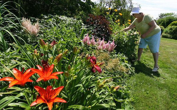 ALLEGRA BOVERMAN/Staff photo. Gloucester Daily Times.Rockport: Gretchen Anderson in her 5 Witham Road garden on Thursday. Her gardens are on the Coastal Gardens tour on Friday and Satuday in Rockport. A luncheon and art sale will be held at her home's grounds as well.