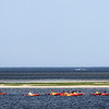 130710_GT_ABO_KAYAKING