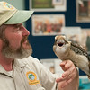 DESI SMITH/Staff photo.  Richard Roth of Creature Teachers, gets a Kookaburra bird to to sing out to a large group of parents and childern, at a live animal program at the Sawyer Free Library Monday afternoon.<br />   July 7,2014