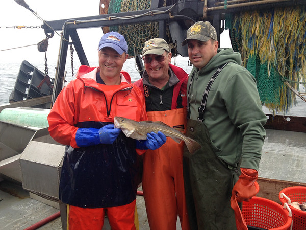SEAN HORGAN/Staff photo<br /> DMF biologist Bill Hoffman, left, holds the one cod caught during the survey trip, alongside state Fish & Game Commissioner George Peterson, center, and Matthew Beaton, secretary of the Executive Office of Energy and Environmental Affairs.