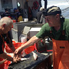 SEAN HORGAN/Staff photo<br /> State Fish & Game Commissioner George Peterson, right, wearing a GoPro camera on his head, helps crew member Paul Fitzgibbons filet some haddock.<br /> -