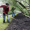Manchester: Jeff Lyons, left, and Pat Machain of the Manchester DPW spread mulch at Hinckley Park despite the pouring rain yesterday afternoon. Photo by Kate Glass/Gloucester Daily Times Monday, June 22, 2009