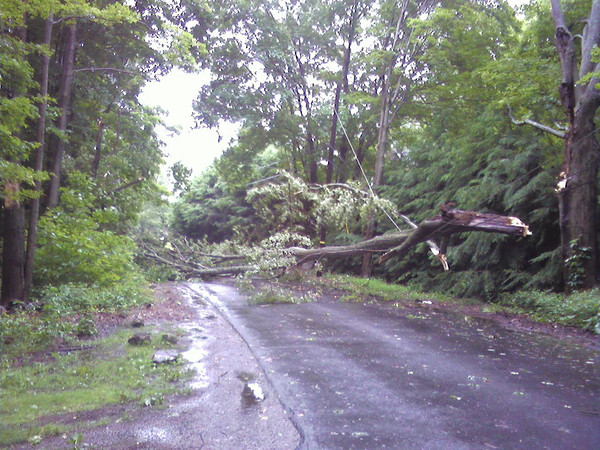 Essex: A tree fell across power lines on County Road during Monday's storm. Photo courtesy Officer Rob Gilardi