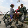 """Gloucester: Brody Duncan, 3, gets pieces of bread to from his grandparents, Bob and Bonnie Duncan of Magnolia, to feed the pigeons at Stacy Boulevard yesterday afternoon. """"I've been saving bread for weeks,"""" Bonnie said. """"He loves to come here to play with the birds."""" Photo by Kate Glass/Gloucester Daily Times"""