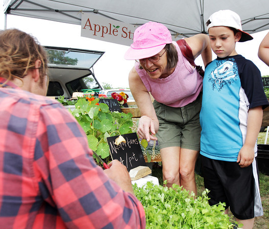 David Le/Gloucester Daily Times. Sandy Sabo, middle, and Lucas Brisbois, 7, of Gloucester, watch as Doug Wolcik, of Apple Street Farms in Essex, left, cuts them some fresh herbs at the opening of the Cape Ann Farmer's Market at Stage Fort Park in Gloucester on Thursday afternoon. 6/30/11.
