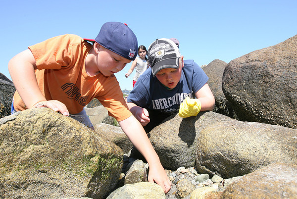 Charlie Prentiss and Jacob English, both students at Rockport Elementary School, search for crabs under rocks at Old Garden Beach during a tidepool scavenger hunt as part of an ocean exploration program with NOAA in honor of World Oceans Day, which was Wednesday. Photo by Kate Glass/Gloucester Daily Times