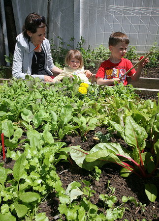 Peggy Lyman and her children, Ruby, 2, and Elliot, 4, look over their backyard garden they are growing as part of the Backyard Growers program. Photo by Kate Glass/Gloucester Daily Times