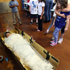 Gloucester: Freddy Hart, a fourth grade student at East Gloucester Elementary School, dressed up as the famous Egyptian mummy, King Tut, during the school's annual Egyptian Fair yesterday. It took Freddy's classmates nearly 20 minutes to wrap him from head to toe. Photo by Kate Glass/Gloucester Daily Times
