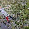 Larson Tolo embraces his fate after he loses his balance on the tight rope across the pond at Essex Elementary School during their last day of school yesterday. All fifth grade students try to cross the pond as part of an annual tradition. Photo by Kate Glass/Gloucester Daily Times