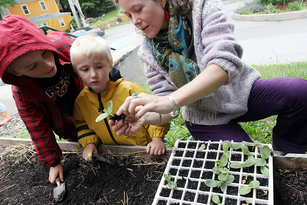 ALLEGRA BOVERMAN/Staff photo. Gloucester Daily Times. Gloucester: During the Tuesday session of the East Gloucester Elementary School Garden Club, Mandy Davis, far right, shows Seamus Buckley, far left, a first grader, and his brother Sean Buckley, 4, what the pumpkin seed looks like as it's starting to sprout. They were planting pumpkins in raised beds in the front of the school.
