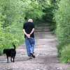 ALLEGRA BOVERMAN/Staff photo. Essex: A man and his dog stroll along the trails in the Manchester Woods.