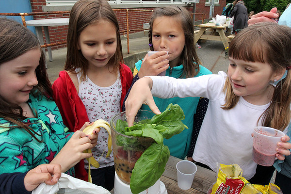 ALLEGRA BOVERMAN/Staff photo. Gloucester Daily Times. Gloucester: During the Tuesday session of the East Gloucester Elementary School Garden Club, club members picked spinach and then made smoothies to share with the others using the fresh spinach leaves, orange juice, bananas, strawberries and blueberries. From left are: first grader Pilar Davis, and third graders Tessa Bushfield,  Mila Barry and Ella Crudele. The club is new this year and is maintaining and harvesting vegetables that other students planted earlier in raised beds donated to the school by The Food Project.
