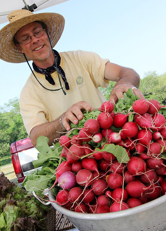 ALLEGRA BOVERMAN/Staff photo. Gloucester Daily Times. Gloucester: Charlie Radoslovich of Rad Urban Farmer of Lexington, Mass., refills his huge colander full of radishes during the first Cape Ann Farmers Market of the season on Thursday at Stage Fort Park.