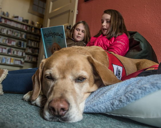 Desi Smith /Gloucester Daily Times.   Rosco the Therapy Dog relaxes with Emma Wonson 9, (left) and Nora Smith 10, as they take turns reading Muddypaws to Rosco Saturday morning at the Essex Public Library. The idea is the kids' reading skills will improve because the dog doesn't judge, doesn't interrupt, and likes to listen.<br />   March 1,2014.