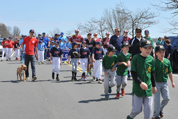 DESI SMITH/Staff photo.   Players from the A B C teams and the Gloucester High School Team, parade down Western Ave on they way to Boudreau Field Saturday morning in the Gloucester Little League Parade.  May 3,2014