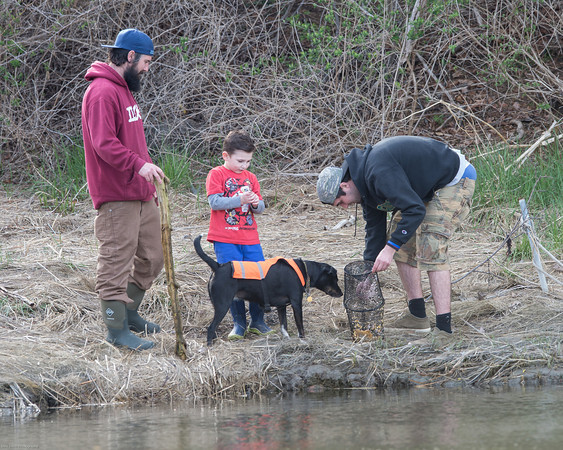 DESI SMITH/Staff photo.   Joshua Hannah and his son Logan 5, look on as Ben Hannah prepares to set his trap into Walkers Creek Sunday afternoon in West Gloucester, to catch minnows that they will use later to do some fishing.   May 4,2014