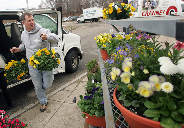 Gloucester: Mark Wonson of Blue Gate Gardens in Rockport unloads flowers from his van to prepare for theHome and Garden Show that will be held today from 10 a.m. to 4 p.m. at Gloucester High School. Blue Gate Gardens will be selling outdoor and indoor flower arrangements at their table.  Mary Muckenhoupt/Gloucester Daily Times